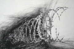 Dornenkrone-Tuschefeder-50-x-40-cm-2011