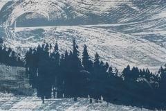 Wald-Holzschnitt-27-x-17-cm-2017